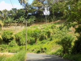 Cedars Residential land