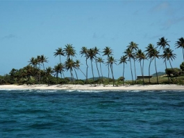Petit Nevis Island