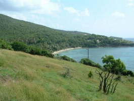 Crown Point Land