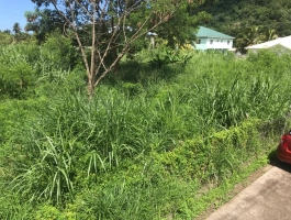 Cane Grove Residential Flat Land